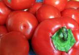 фон_овощ_томат_п�