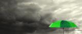 фон_зонт_зеленый