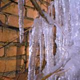 природа_фон_зима