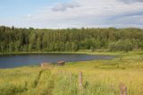 озеро,_лес,_луг,_л