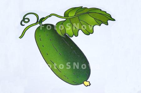 картинки зеленные