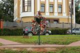дерево,_свадьба,_