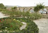 ботанический,_са
