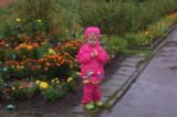 Осень,_дождь,_сен