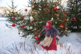 Зима,_шары,_ёлки