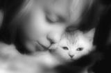 девочка,_котенок