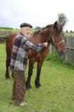 дедушка,_лошадь,_
