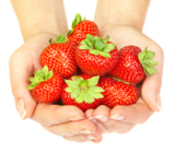strawberry_food_red_fruit_agri