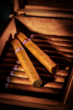 сигара,_сигары,_м