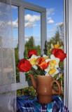 тюльпан,_ваза,_на