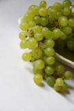 виноград,_фрукт,_