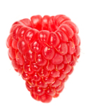 isolated_berry_white_sweet_red