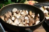 грибы,_гриб,_белы