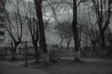 Туман,_дома,_доро