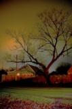 Дом,_дерево,_поле