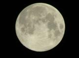 луна,_спутник,_са