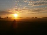 утро,_поле,_лес,_с