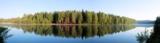 панорама,_лес,_пе