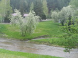 природа,_лето,_ре