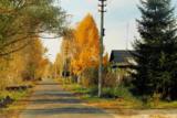 Листопад,_дорог�