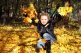 осень,_золото,_по