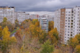 осень,_осенний,_г