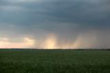 ливень_дождь_пог