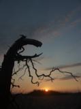 пейзаж,_закат,_чу