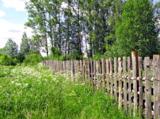 природа_пейзаж_з