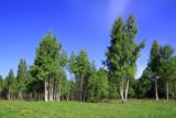 природа_пейзаж_р