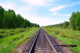 пейзаж_дорожный_