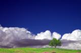 пейзаж_природа_н