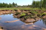 природа_пейзаж_к