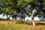 пейзаж_природа_п