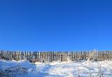 пейзаж_фон_зима_�