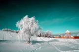 пейзаж_природа_з