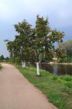пейзаж_природа_в