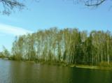 весна_апрель_вод
