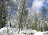 март_весна_снег_�
