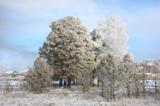 зима,_день,_небо,_
