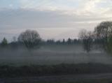 Природа,_туман,_в