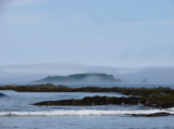 Alexanders_island,_Far_East,_o