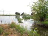 пейзаж,_пруд,_озе