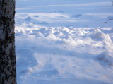 Зима,_январь,_дек