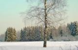 снег,_бер