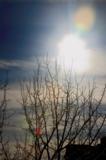 _пейзаж,_зима,_сн�