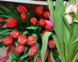 Цветы,_весна,_тюл