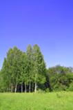 пейзаж_природа_т