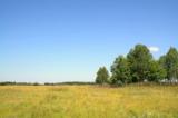 пейзаж_природа_д