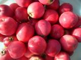 Яблоки,_урожай,_п